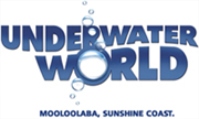 Underwater World Sunshine Coast